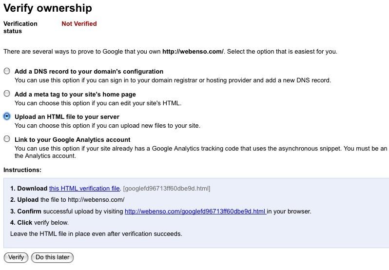 Google Verification Steps