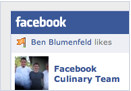 Facebook Like Badge