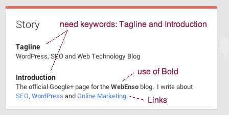 Tagline and Introduction in Google+ Story