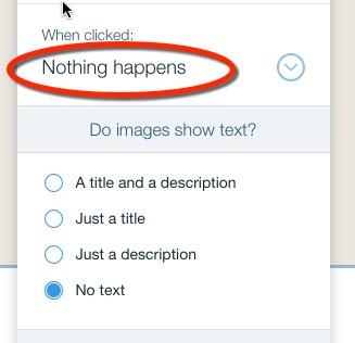WiX image click option